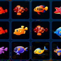 Fish Cards Match